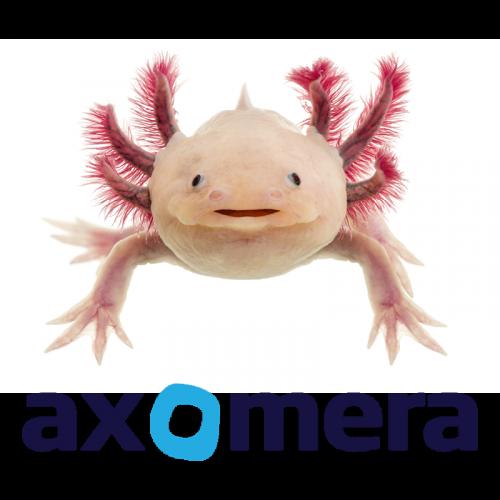 Axomera Therapie in der Orthopädiepraxis Bad Essen